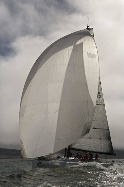 Photograph - San Francisco Spinnaker by Steven Lapkin