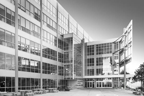 Leonard Photograph - San Francisco State University Leonard Library by University Icons