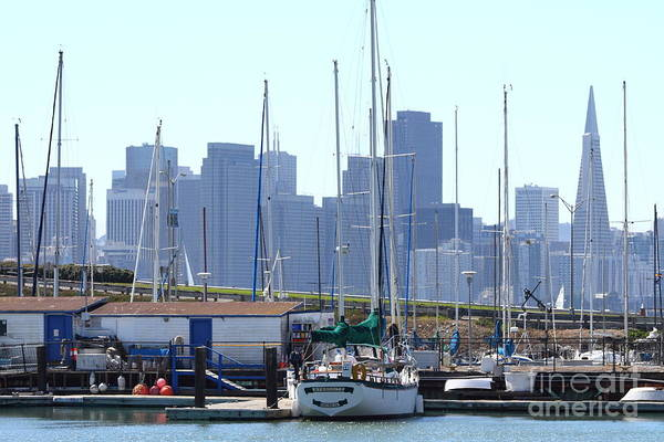 Photograph - San Francisco Through The Treasure Isle Marina 7d25458 by Wingsdomain Art and Photography