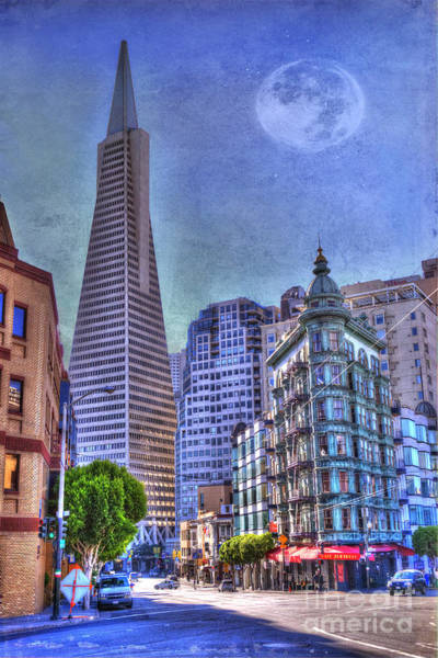 Sentinel Photograph - San Francisco Transamerica Pyramid And Columbus Tower View From North Beach by Juli Scalzi