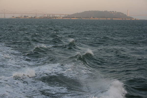 Photograph - San Francisco Waves by Cynthia Marcopulos