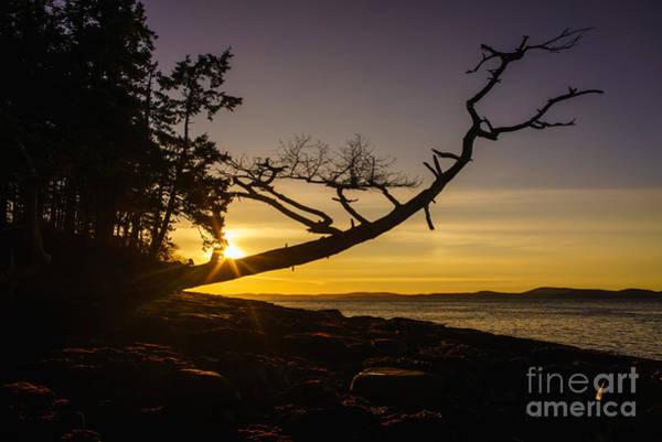 Wall Art - Photograph - San Juans Sunset Peace by Mike Reid