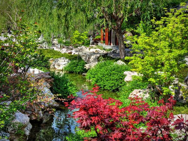 Photograph - San Marino - Huntington Botanical Gardens 005 by Lance Vaughn