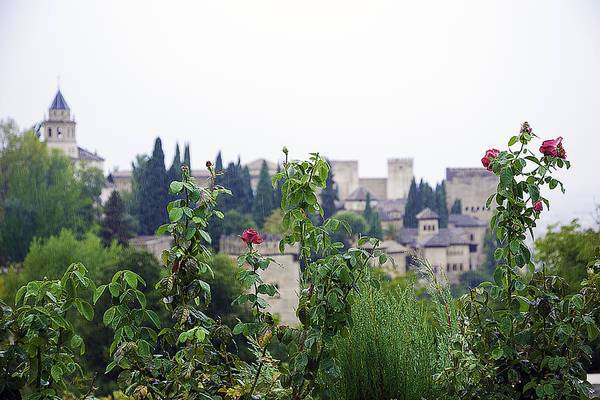 Wall Art - Photograph - San Nicolas View Of The Alhambra On A Rainy Day - Granada - Spain - Spain by Madeline Ellis