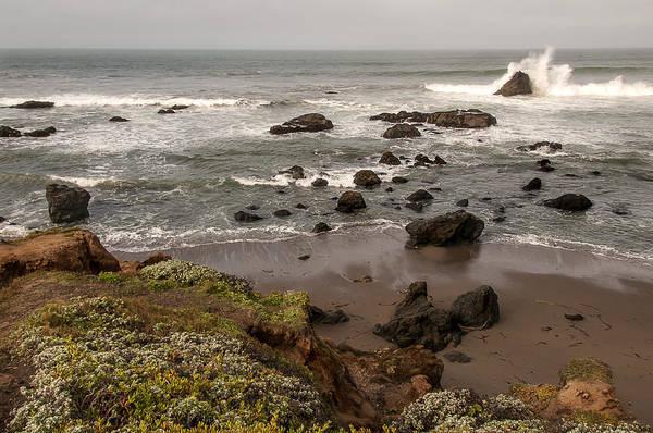 Photograph - San Simeon Beach by Lee Kirchhevel