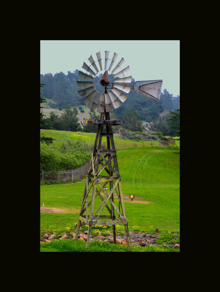 Painting - San Simeon Pines Windmill Duvet by Barbara Snyder