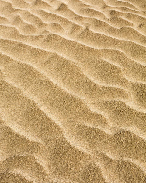 Alfresco Wall Art - Photograph - Sand Abstract by David Taylor