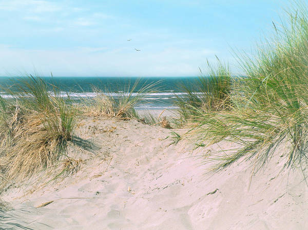 Photograph - Sand Drifts by Micki Findlay