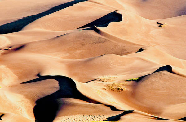 Photograph - Sand Dune Abstract by Mae Wertz