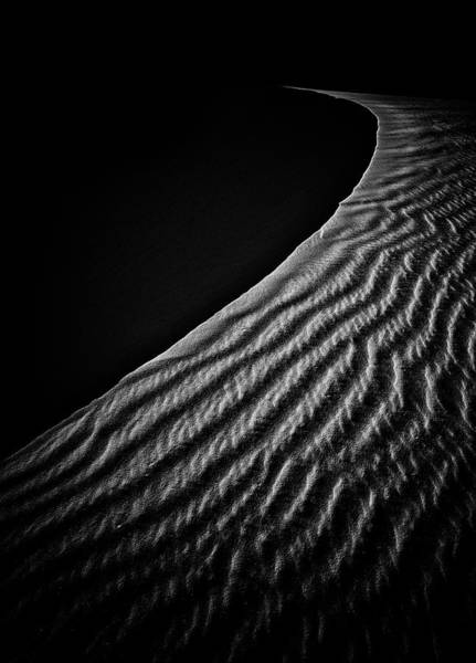 Wall Art - Photograph - Sand Dune by Lydia Jacobs