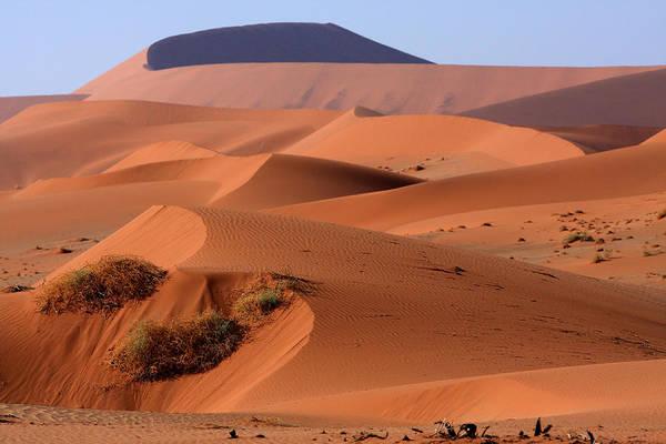 Photograph - Sand Dune Sculpture  by Aidan Moran
