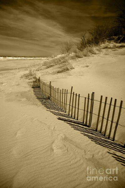 Photograph - Sand Dunes And Fence by Timothy Johnson