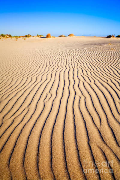 Sand Wall Art - Photograph - Sand Dunes At Eucla by Colin and Linda McKie