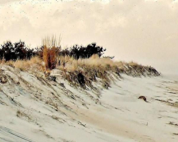 Photograph - Sand Dunes At Penny Beach by Kim Bemis