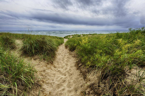 Photograph - Sand Dunes Beach Path by Sebastian Musial