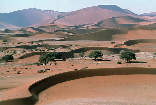 Wall Art - Photograph - Sand Dunes by Dr Juerg Alean/science Photo Library