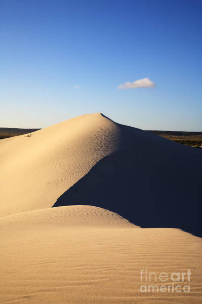 Wall Art - Photograph - Sand Dunes Eucla Western Australia by Colin and Linda McKie