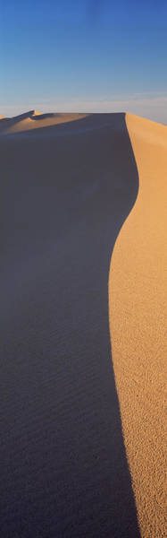 Wall Art - Photograph - Sand Dunes In A Desert, Algodones by Panoramic Images