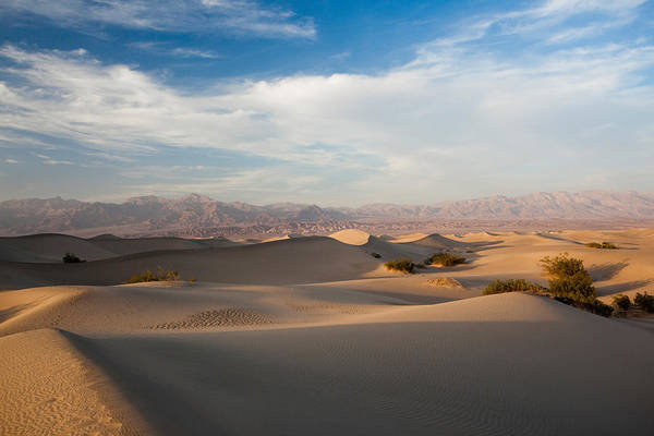 Inyo Mountains Photograph - Sand Dunes In A Desert, Mesquite Flat by Panoramic Images