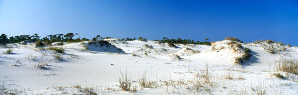 Gulf State Park Photograph - Sand Dunes In A Desert, St. George by Panoramic Images