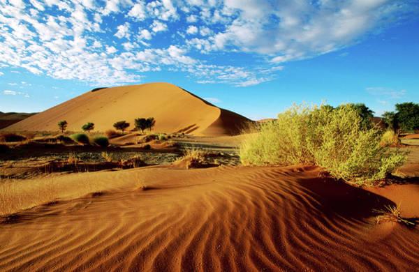 Sand Photograph - Sand Dunes In Namib Desert Park by Ariadne Van Zandbergen