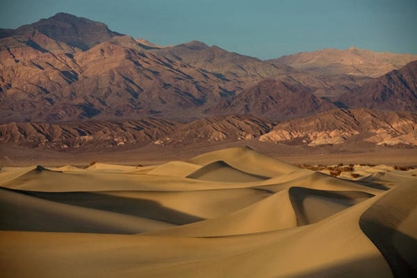Death Valley Np Photograph - Sand Dunes In The Foreground by Aaron Black