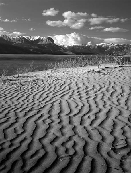 Photograph - 1m3938-bw-sand Dunes In The Rockies  by Ed  Cooper Photography