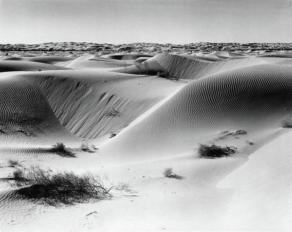 Yuma Photograph - Sand Dunes Off Into Horizon Scattered by Vintage Images