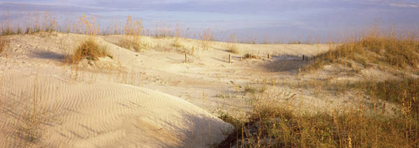 Peacefulness Photograph - Sand Dunes On The Beach, Anastasia by Panoramic Images