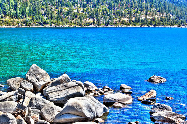 Photograph - Sand Harbor Blue Ripples by William Havle