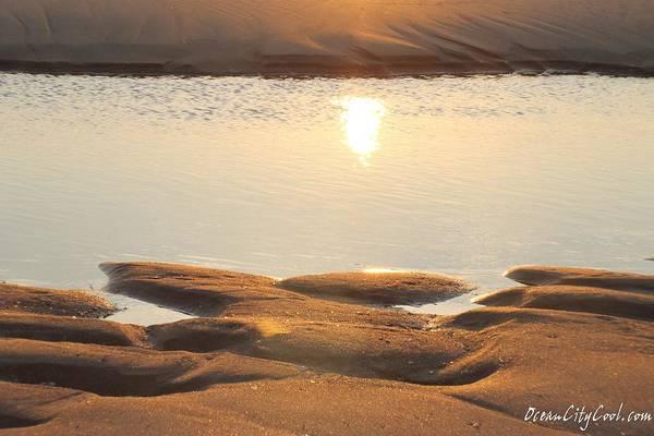 Photograph - Sand Shine by Robert Banach