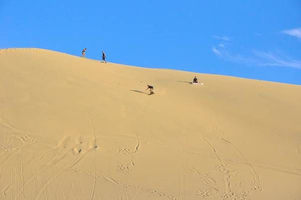 Sand Surfing In The Dunes Near Huacachina, Peru Art Print by Markus Daniel