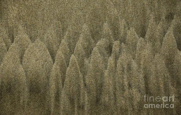 Photograph - Sand Texture by Charmian Vistaunet