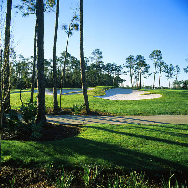 Destin Photograph - Sand Trap In A Golf Course, Regatta Bay by Panoramic Images