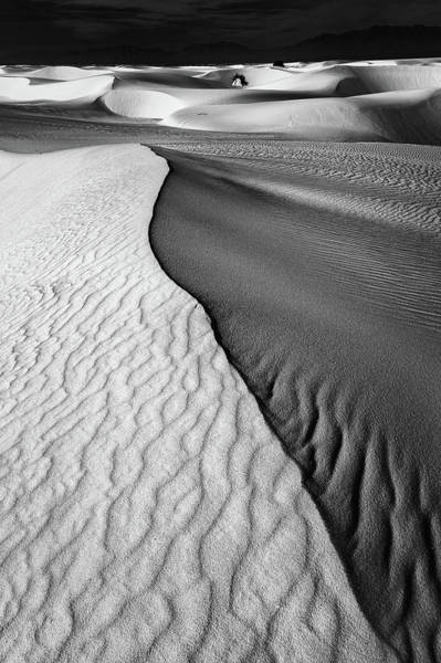 Mexico Photograph - Sand Waves by Lydia Jacobs
