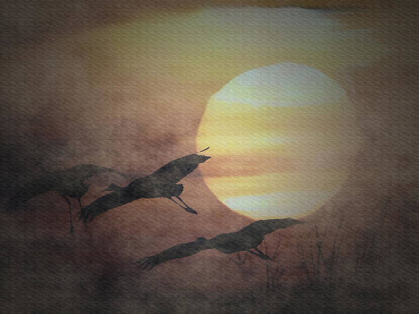 Mixed Media - Sandhill Cranes In The Mist by Dennis Buckman
