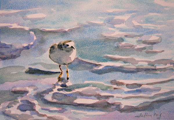 Painting - Sandpiper And Seafoam 3-8-15 by Julianne Felton