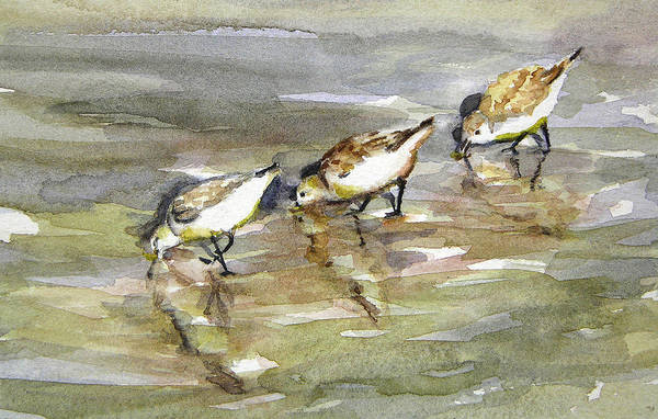 Painting - Sandpiper Trio by Julianne Felton