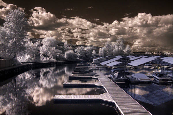 Photograph - Sandpoint Marina In Infrared by Lee Santa