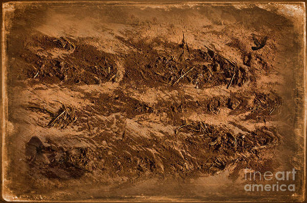 Wall Art - Photograph - Sands Of Time by The Stone Age