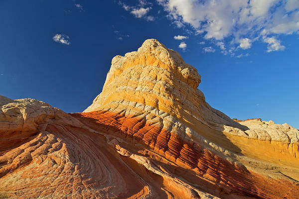 Vermilion Cliffs National Monument Wall Art - Photograph - Sandstone Formations At White Pocket by Danita Delimont