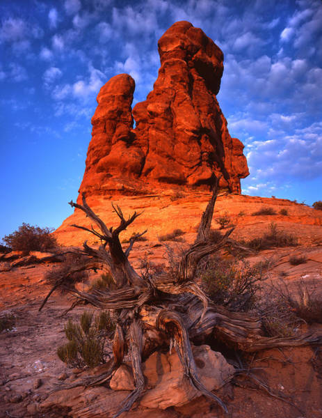 Photograph - Sandstone Sunrise by Ray Mathis