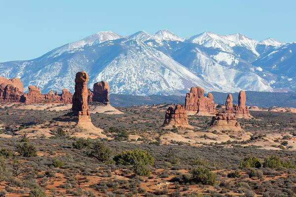 Eroded Wall Art - Photograph - Sandstone Towers And La Sal Mountains by Dr Juerg Alean/science Photo Library
