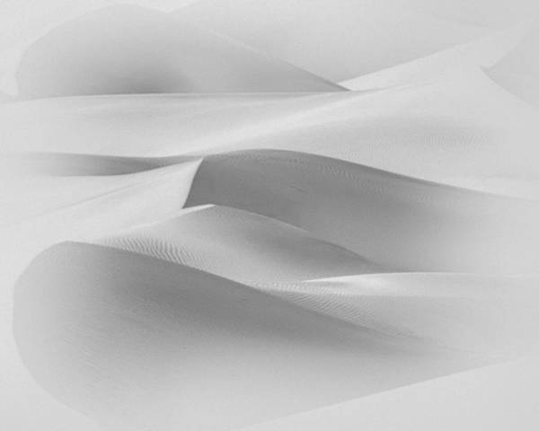 Photograph - Sandstorm  by Gigi Ebert