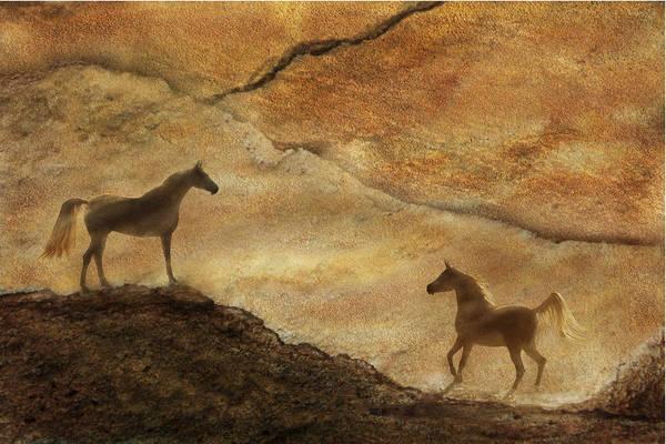 Photograph - Sandstorm by Melinda Hughes-Berland