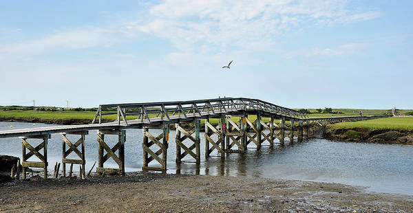 Photograph - Sandwich Boardwalk by Joanne Brown