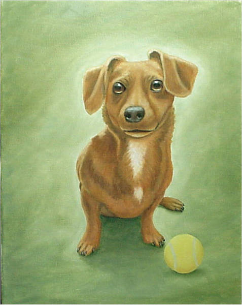 Painting - Sandy by Fran Brooks
