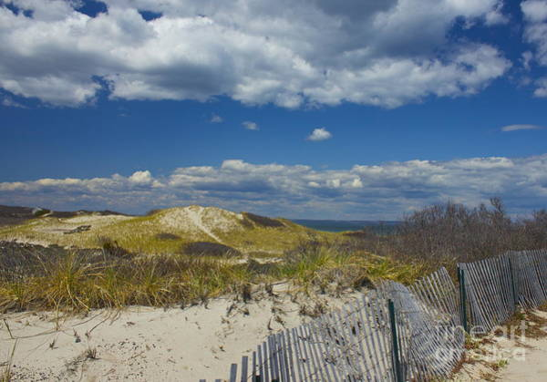 Photograph - Sandy Neck Beach by Amazing Jules