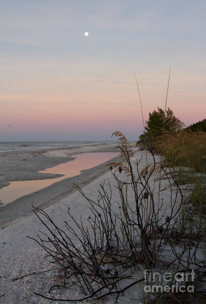 Photograph - Sanibel Moonrise by Chris Scroggins