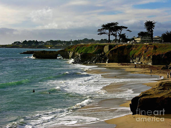 Photograph - Santa Cruz Beach by Carol Groenen